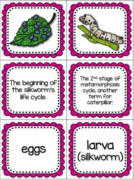 Life Cycle Sequencing Interactive Notebook Activities & More {Silkworm}