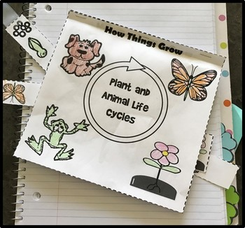 Life Cycle Sliders Books