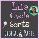 Life Cycle Sorts | Digital & Paper