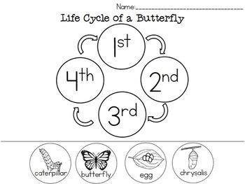 Life Cycle Spring Freebie!