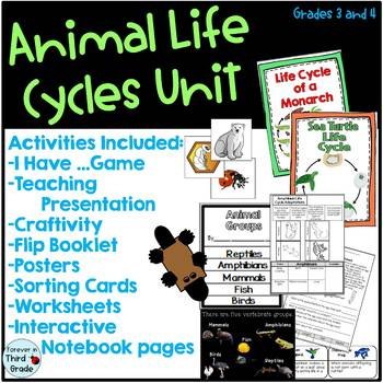 Life Cycle Unit