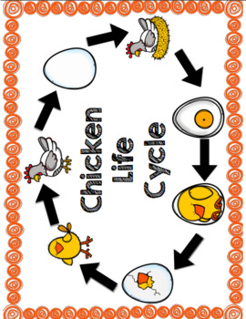 Life-Cycle Unit