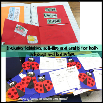 Life Cycle Unit - Ladybug and Butterfly Grades 1-3