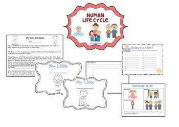 Life Cycle Unit for Insects (butterflies), Frogs and Humans