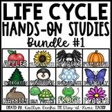 Life Cycle Units for Preschools GROWING BUNDLE