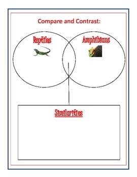 Life Cycle Venn Diagrams
