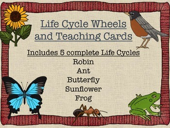 Life Cycle Wheels and Teaching Cards