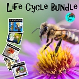 Life Cycle Whole Year Bundle | Project Based Learning STEA