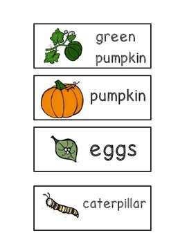 Life Cycle Word Wall Cards