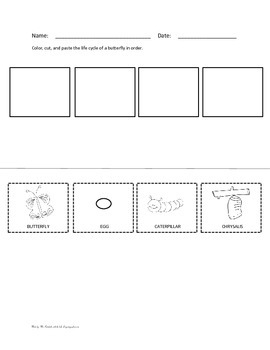 Life cycle of a butterfly worksheet teaching resources teachers life cycle of a butterfly worksheets for preschool fandeluxe Images