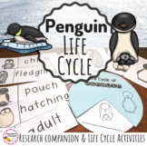 Life Cycle of A Penguin and Research Companion