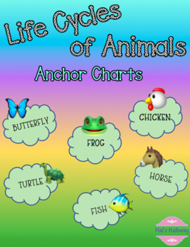 Life Cycle of Animals (Lesson 1)