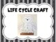 Life Cycle of Barn Owls: Literacy, Science, and Craft Activities