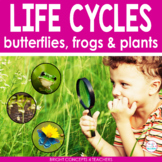 Life Cycle Activities for Butterflies, Frogs & Plants