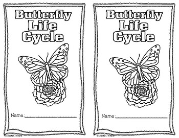 Life Cycle of Butterfly Differentiated Readers