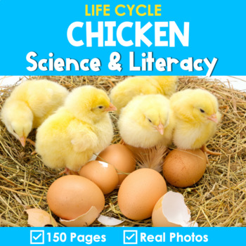 Chicken Life Cycle Science and Literacy Activities