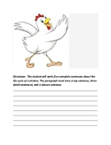Life Cycle of Chicken Writing
