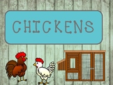 Life Cycle of Chickens