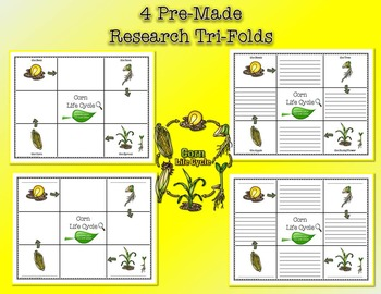 Life Cycle of Corn Research Tri-Folds and Graphic Organizers