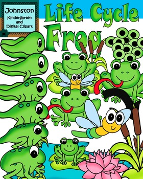Life Cycle of Frog Clipart