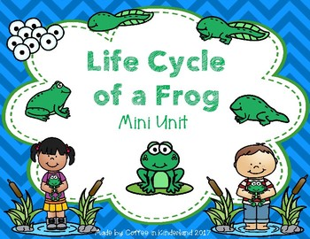 Frog Life Cycle Mini Unit and Craft