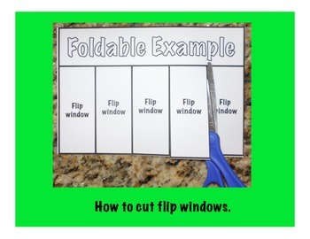 Life Cycle of Frog Science Interactive Foldable
