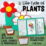 Life Cycle of Plants Unit, Investigations & Plant Life Cycle PowerPoint NGSS