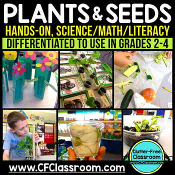 Plant Life Cycle NGSS Second Grade Science 2-LS2-1 |  2-LS2-2 | 2-LS4-1