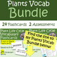 Life Cycle of Plants Vocabulary Flashcards- Front to Back