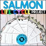 Life Cycle of Salmon: Fact Fan