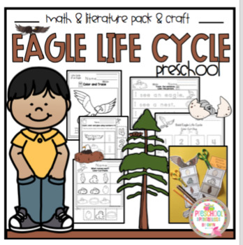 Life Cycle of a Bald Eagle