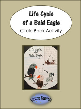 Life Cycle of a Bald Eagle Circle Book