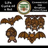 Life Cycle of a Bat Clip Art Set-DOLLAR DEAL!