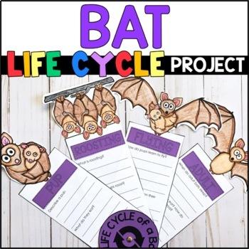 Life Cycle of a Bat: Fact Fan