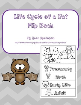 Life Cycle of a Bat Flip Book