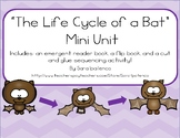 Life Cycle of a Bat Mini Unit