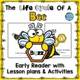 Life Cycle of a Bee For Little Learners Emergent Reader ES