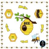 Life Cycle of a Bee - Make a Fun Bee Book