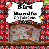 Bird Life Cycle Pack