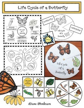Caterpillar / Butterfly Activities: Life Cycle of a Butterfly Activities