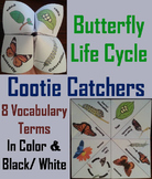 Butterfly Lifecycle Activity/ Foldable