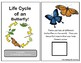 Life Cycle of a Butterfly Adapted Book