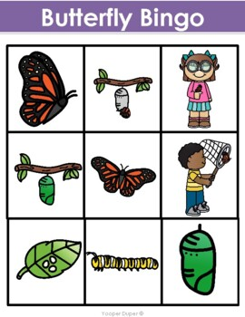 Life Cycle of a Butterfly Bingo