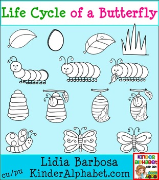 Life Cycle of a Butterfly- Black and White {Clip Art for Teachers}
