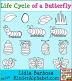 Life Cycle of a Butterfly- Black and White {Clip Art for T
