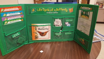Life Cycle of a Butterfly Center