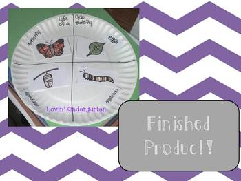Life Cycle of a Butterfly {ELA, Science and Craftivities}