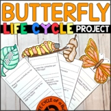 Life Cycle of a Butterfly: Fact Fan
