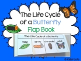 Life Cycle of a Butterfly ~ Flap Book Project