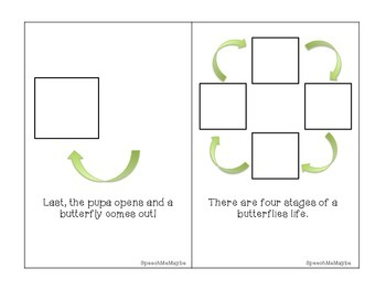 {FREEBIE} Life Cycle of a Butterfly: Interactive Book & Sequencing Activity